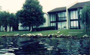 Disney's Vacation Villas in 1984