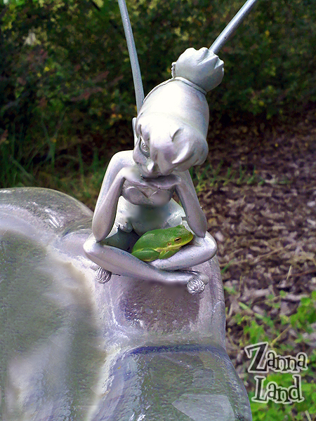 Tinker Bell protects a visiting tree frog in our front yard.