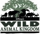 Remembering Disney's Animal Kingdom Opening Day, April 22 1998