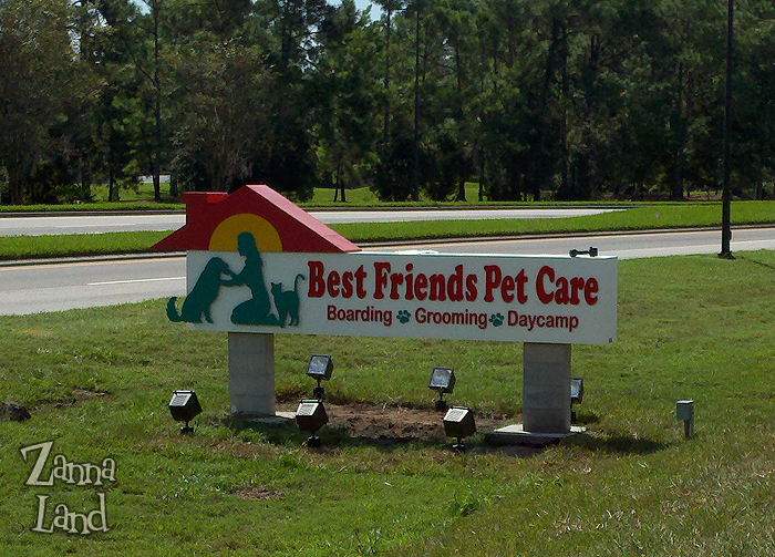Pets get a dose of pixie dust at disney 39 s best friends pet for Dog kennels near disney world