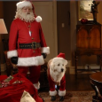"""Someone once told me that the spirit of Christmas is embodied in the hearts of children, untouched as of yet by the doubts, fears and disappointments of the adult world."" –Santa Claus in ""The Search for Santa Paws"" Whether you're nine or ninety-nine, Santa Claus likely still holds a special […]"
