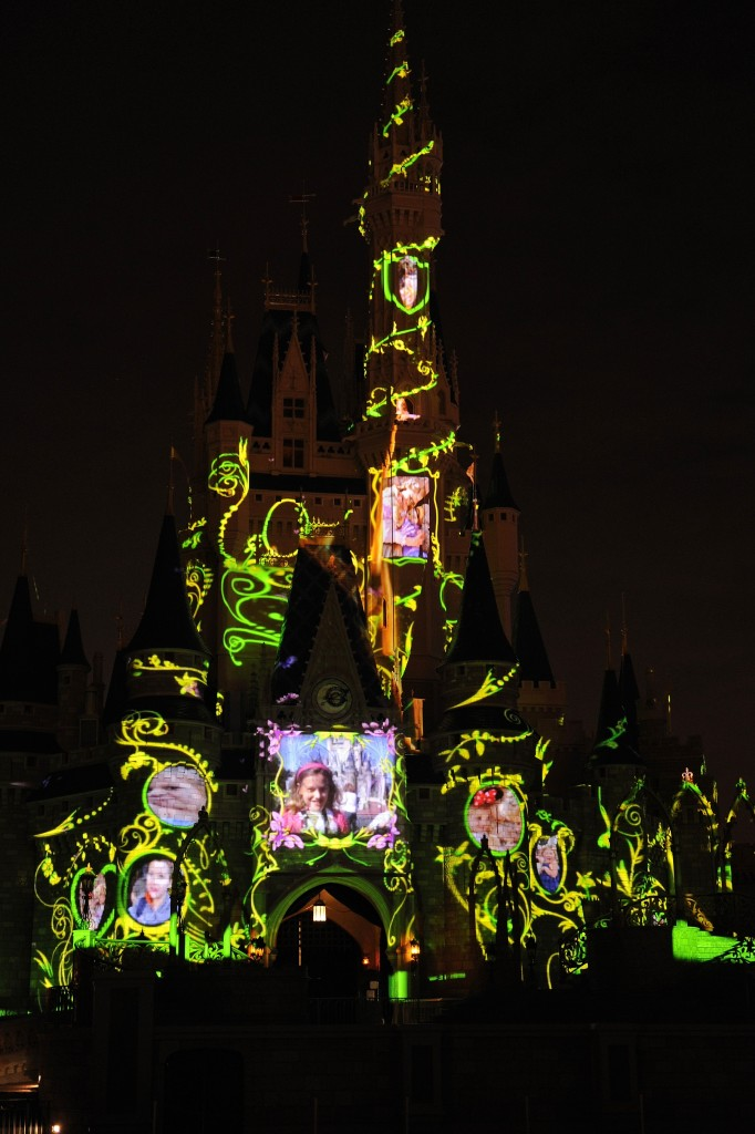 Magic Memories You Castle Vines