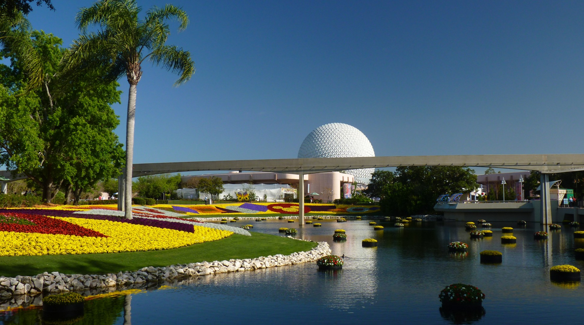 Jud's Disney Picture of the Day: BIG BALL, ONE PALM
