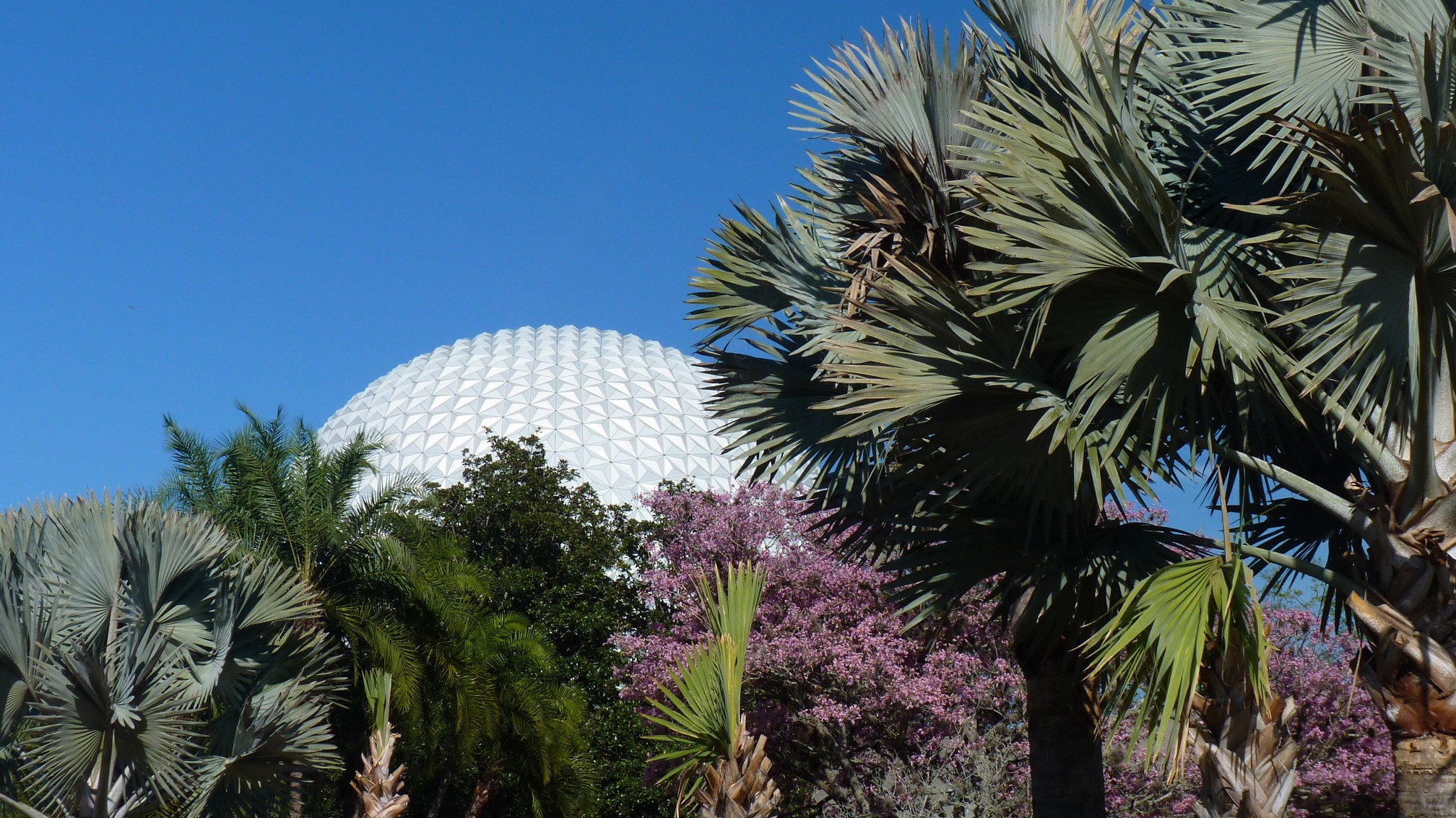 Jud's Disney Picture of the Day: CRESCENT BIG BALL