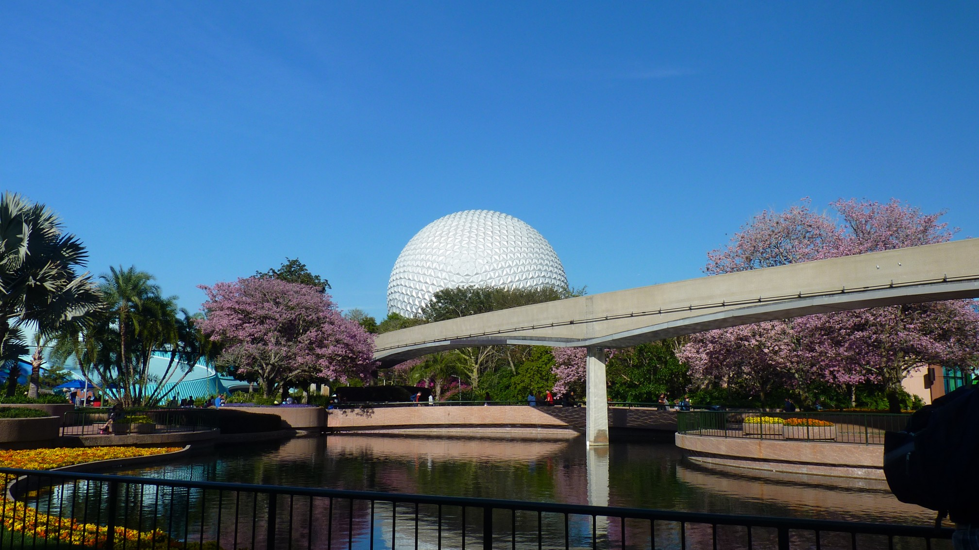 Jud's Disney Picture of the Day: BIG BALL VIOLET