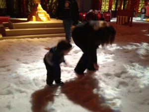 Kung Fu Panda Awesome Snow