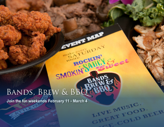 Bands Brew & BBQ Festival at SeaWorld Brings Music+Food Together