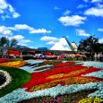 The Epcot International Flower and Garden Festival has been a family favorite for years, so of course this year was no different. Below are some of my favorite flowers and topiaries. I've left some displays out so you can discover them on your own when you visit. If you have...