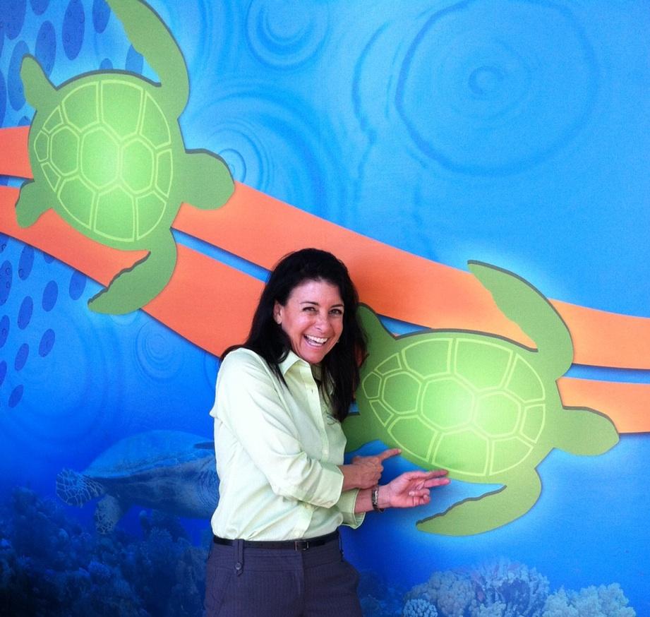 Turtle Trek at SeaWorld
