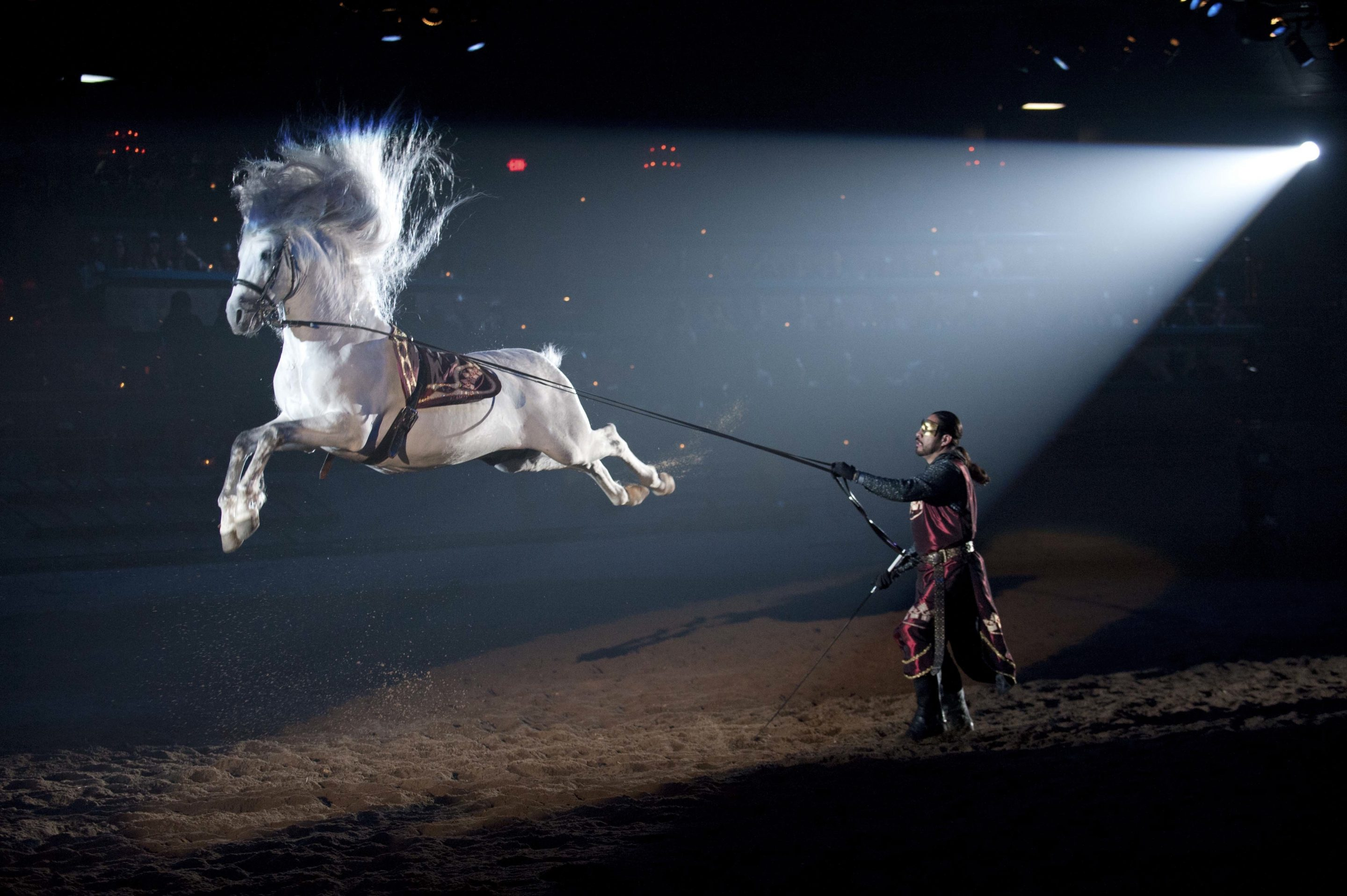 Medieval Times Premiers Epic New Show, Costumes, and Music!