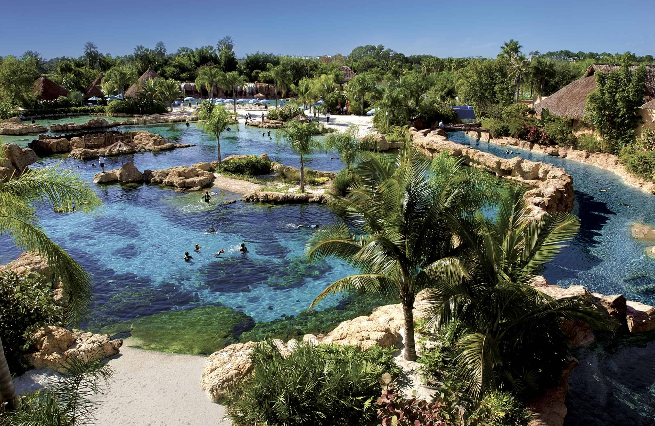10 Reasons You MUST Visit SeaWorld's Discovery Cove