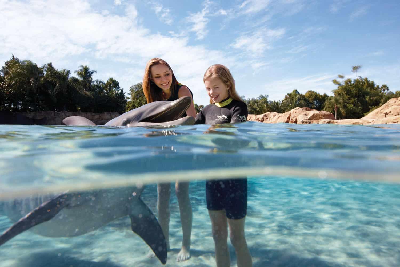 10 Reasons You Must Visit Seaworld 39 S Discovery Cove Zannaland