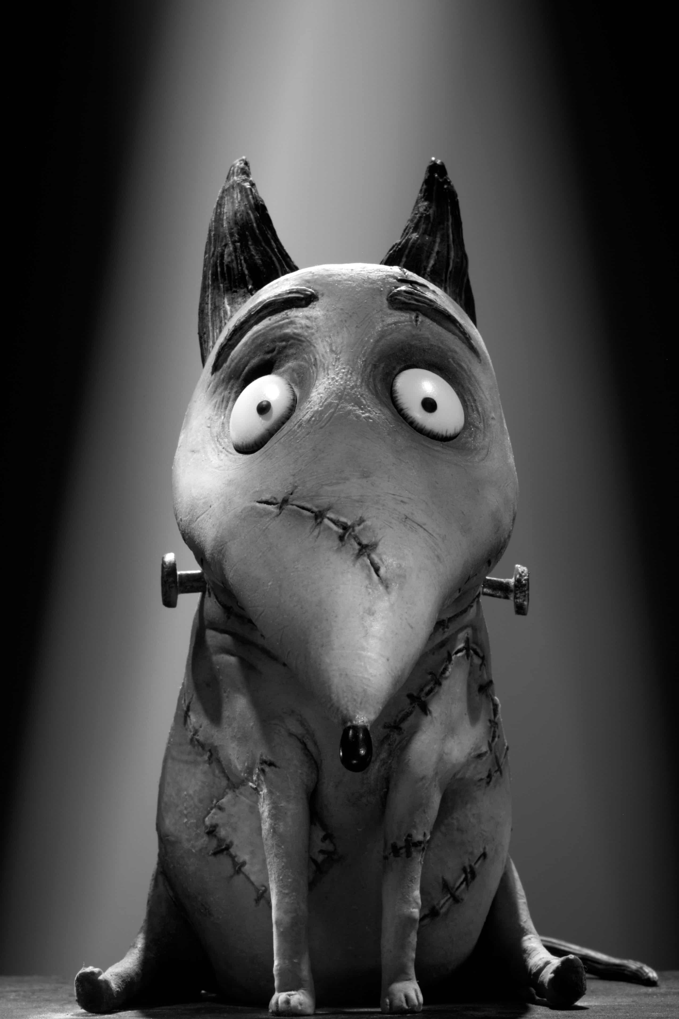 Tim Burton S Frankenweenie A Fun Homage To Creepy Movies Past Zannaland