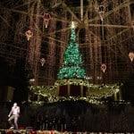Gaylord Palms Holiday decor