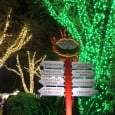 There are so many wonderful holiday events at Central Florida theme parks, and this year Busch Gardens Tampa is launching the biggest Christmas celebration ever. For the first time in the park's 53-year history, visitors to Christmas Town will experience all-new evening attractions, shows and shopping from 6 to 11...