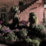 Lady and the Tramp topiary at night