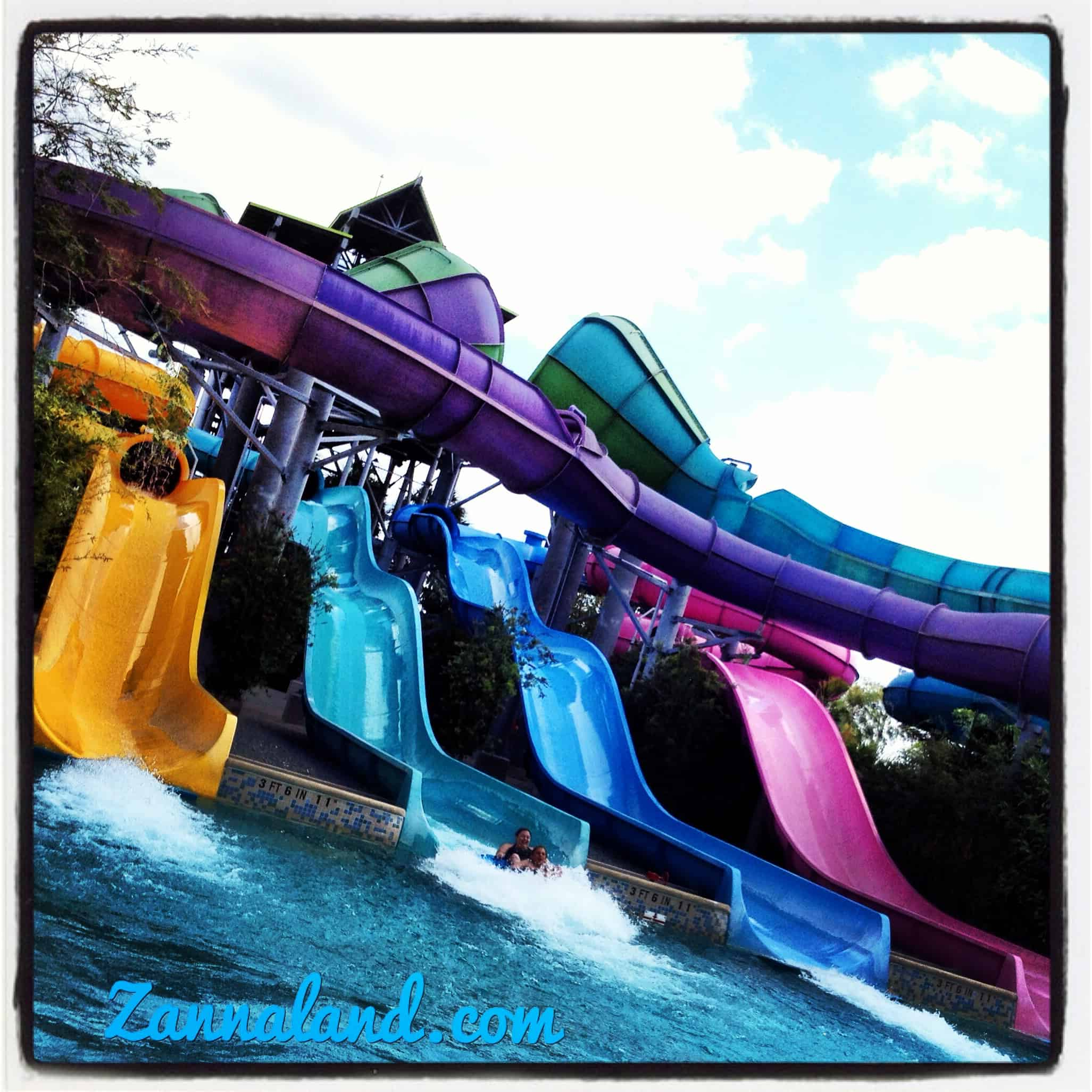 SeaWorld's Aquatica Water Park's 5th Birthday Celebration