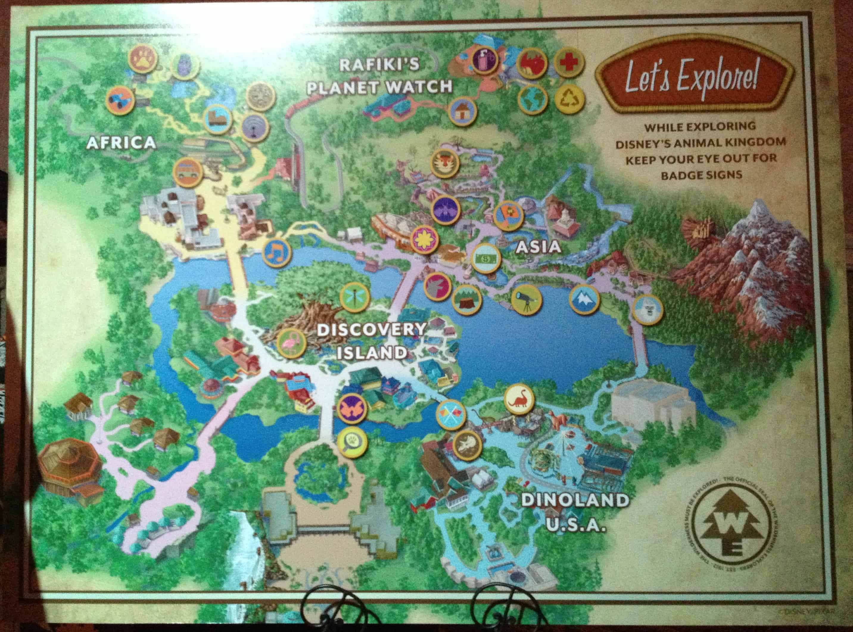 New Wilderness Explorers Activity to Debut Soon at Disney's Animal Kingdom