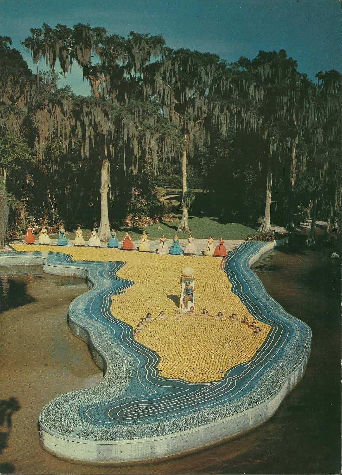 The Florida Pool