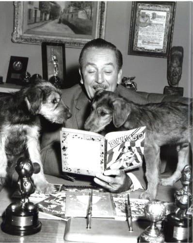 Walt Disney Golden Books